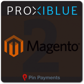 Magento 2 Pin Payments